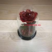 Красная с позолотой роза в колбе королевская
