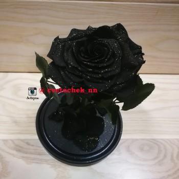 Черная с позолотой роза в колбе королевская